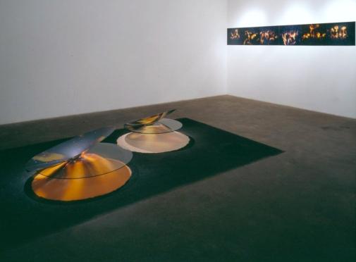 Connie Zehr_Episodes Full Installation 2002